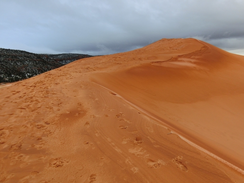 coral_pink_sand_dunes_pic2