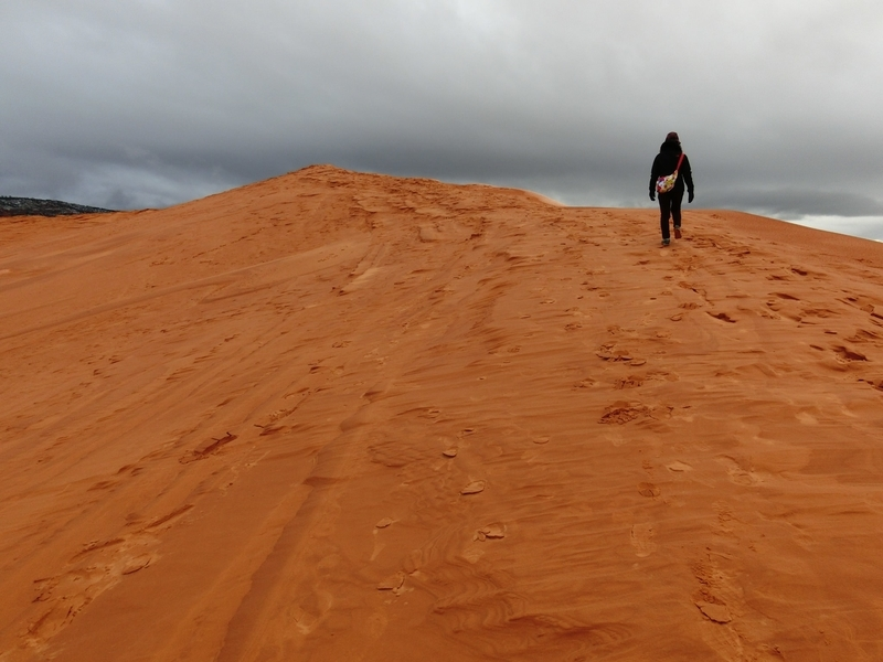 coral_pink_sand_dunes_pic6