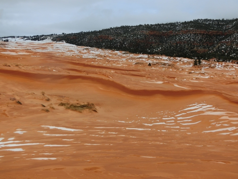 coral_pink_sand_dunes_pic7
