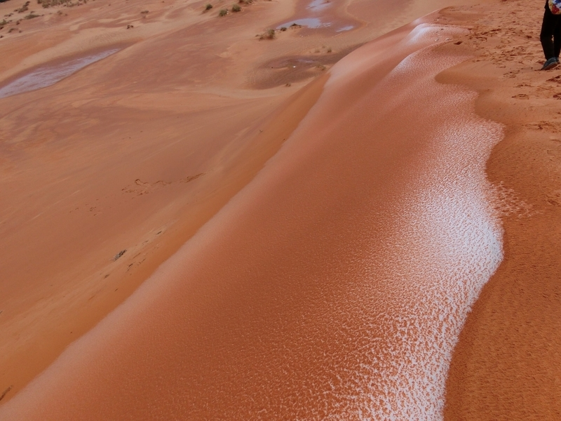 coral_pink_sand_dunes_pic8