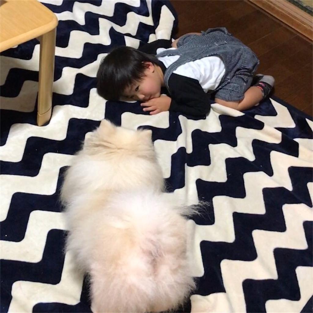 f:id:mutsuki001:20171022012438j:image