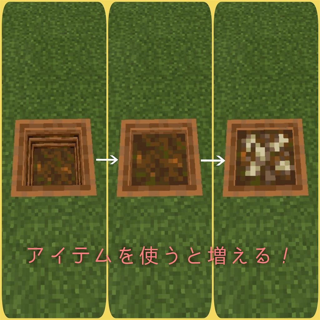 f:id:mutsuki03:20190510073509j:image