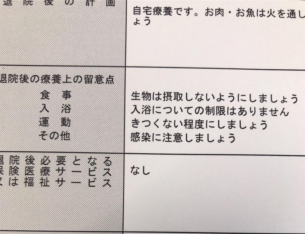 f:id:mutsukichikun:20190303101801j:image