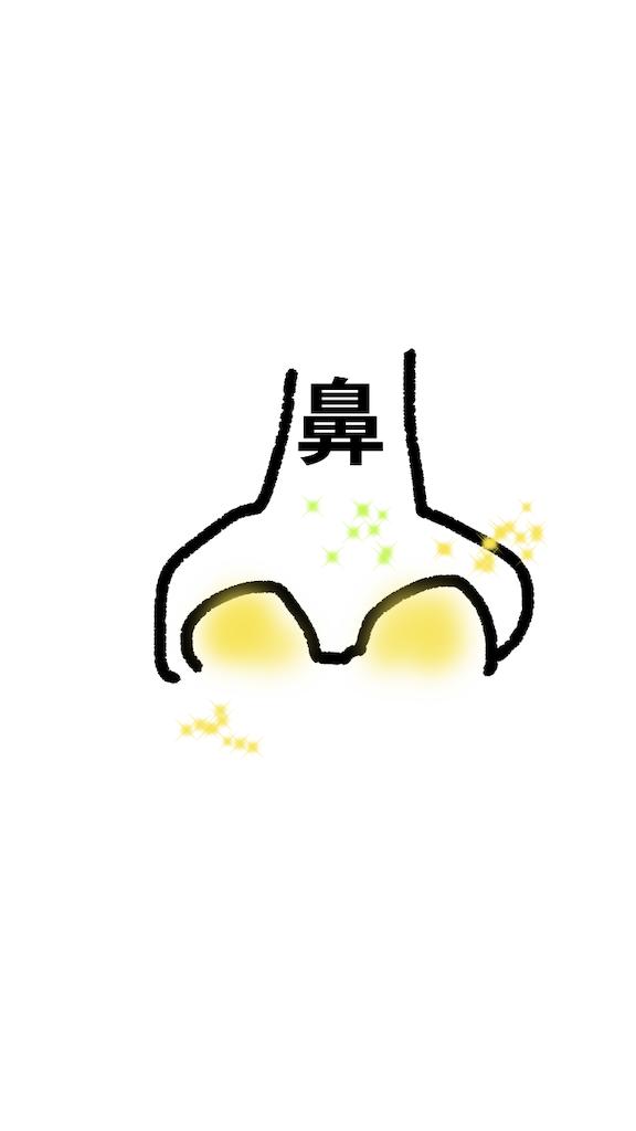 f:id:mutsukichikun:20190305135307p:image
