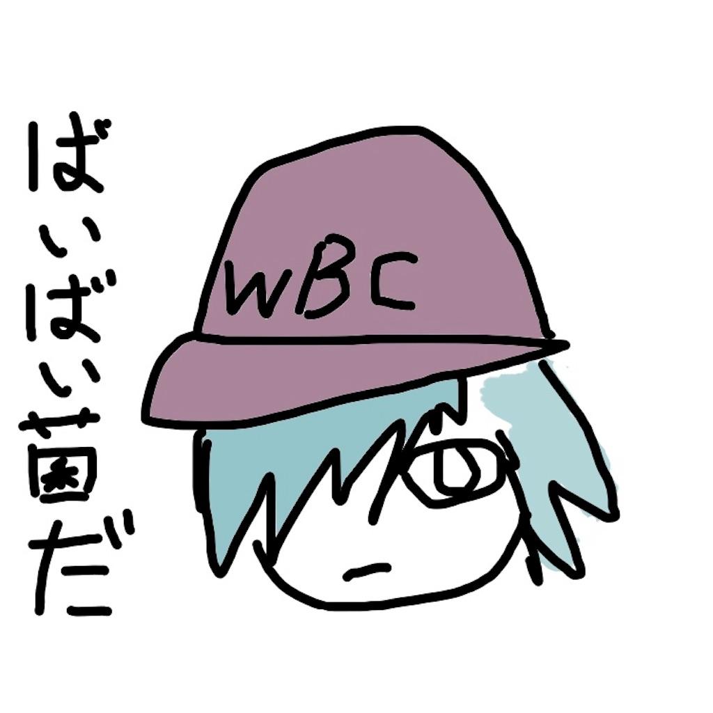 f:id:mutsukichikun:20190321152632j:image