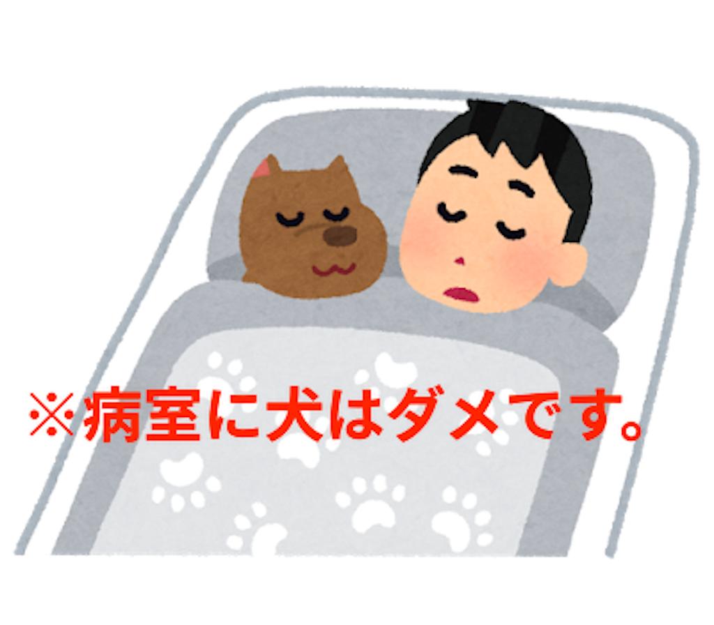 f:id:mutsukichikun:20190409075811p:image