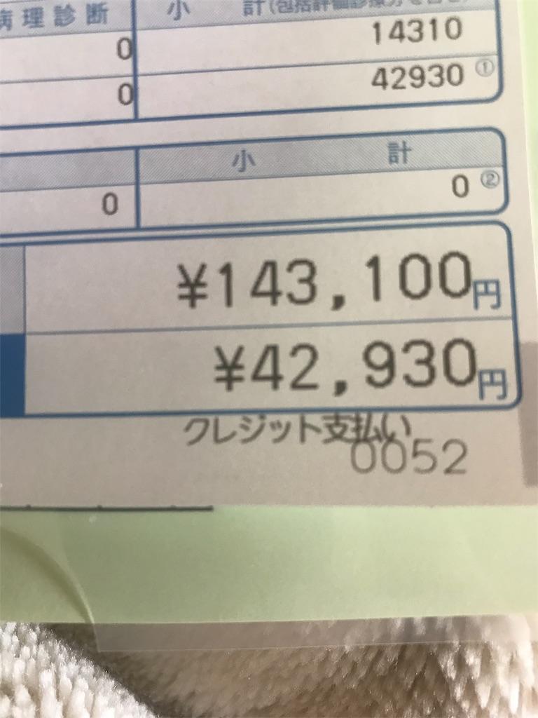f:id:mutsukichikun:20191108121337j:image