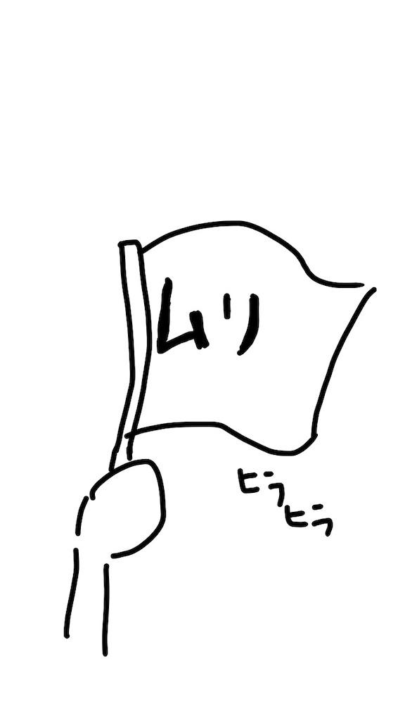 f:id:mutsukichikun:20200217001520j:image
