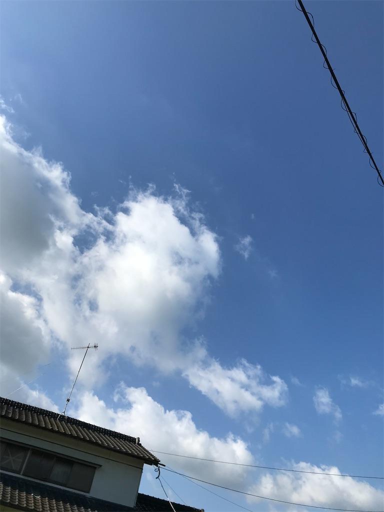 f:id:mutsukichikun:20200606223716j:image