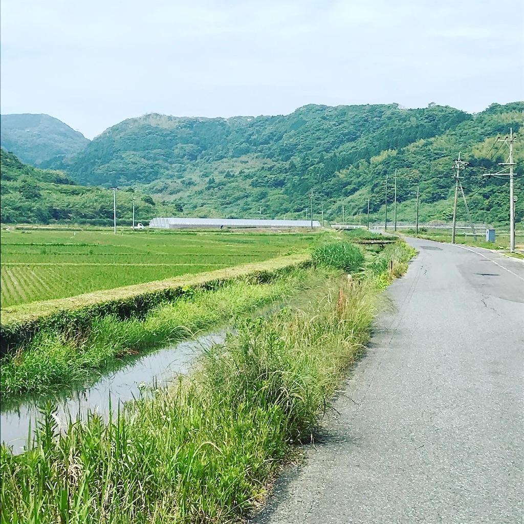 f:id:mutsukichikun:20200606223747j:image