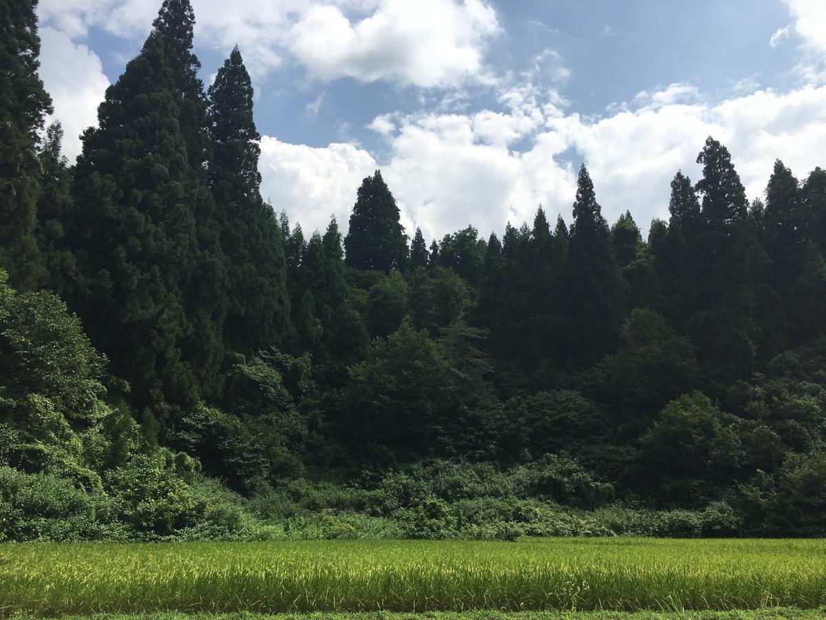 f:id:mutsukinoie:20190831113453j:plain