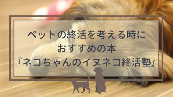 f:id:mutsukitorako:20180424223632j:plain