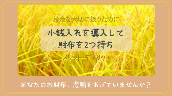 f:id:mutsukitorako:20180507134439j:plain
