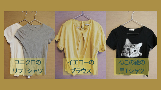 f:id:mutsukitorako:20180725201220j:plain