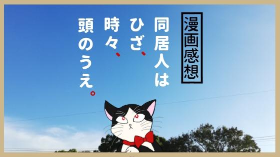 f:id:mutsukitorako:20180904214339j:plain