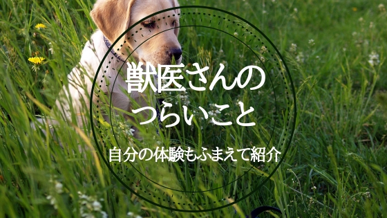 f:id:mutsukitorako:20180912232632j:plain