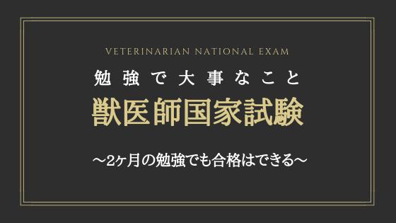 獣医師国家試験の勉強で大事なこと~2ヶ月の勉強でも合格はできる~