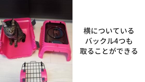 f:id:mutsukitorako:20181108194808j:plain