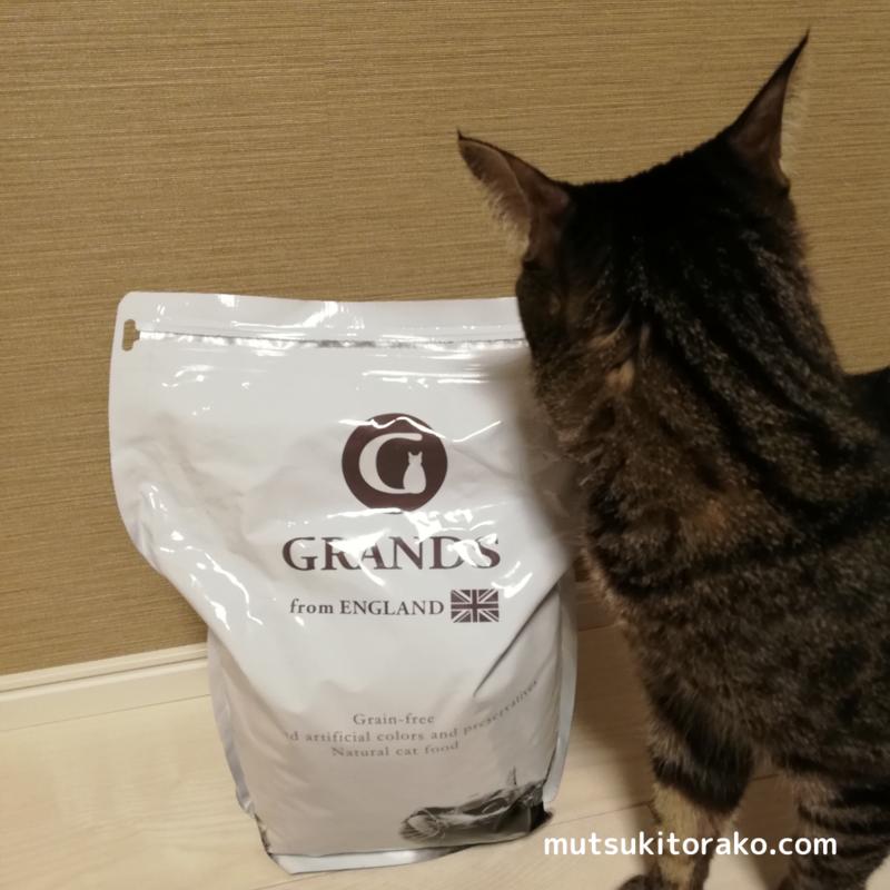GRANDS(グランツ)キャットフードの香りに引き寄せられる猫