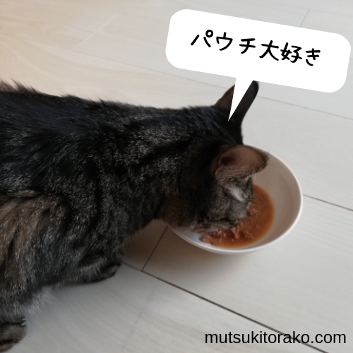 ピュリナワンパウチをおいしそうに食べるわが家の猫