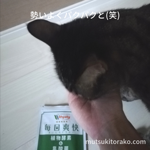 毎日爽快をわが家の猫が食べているところ
