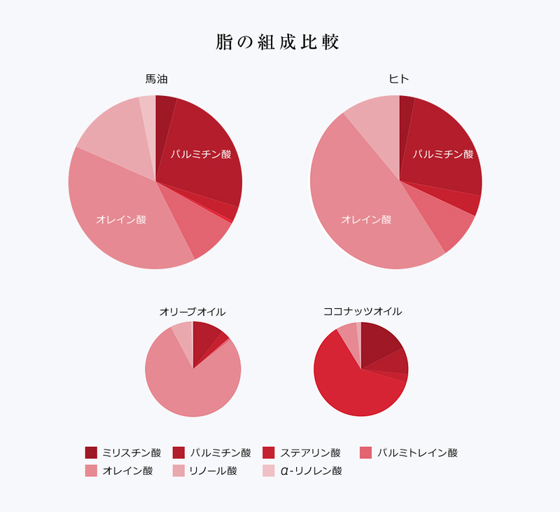 KUMAMOTO潤馬化粧養油人の皮脂と馬の皮脂の成分比較
