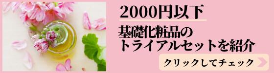f:id:mutsukitorako:20200104214814p:plain