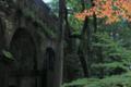 京都新聞写真コンテスト 疏水色づく