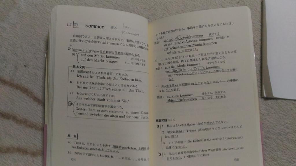 f:id:mutsumunemitsutan:20180613192217j:plain