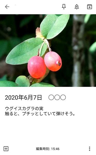 f:id:muu8san:20201003162828j:plain