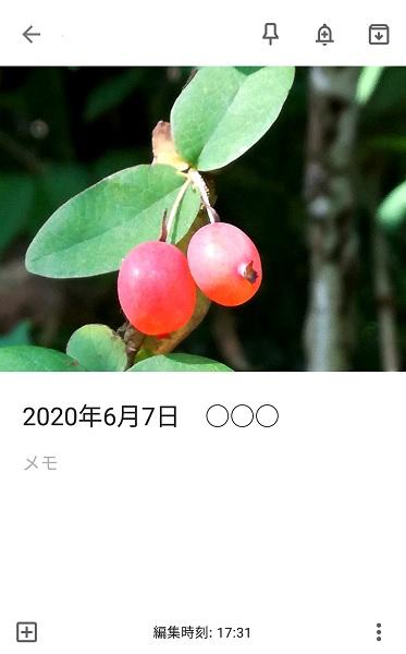 f:id:muu8san:20201003180356j:plain