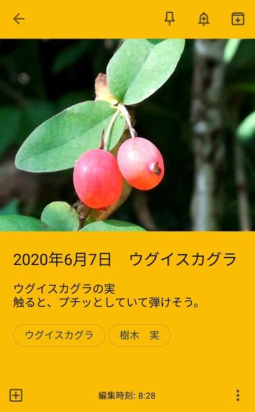 f:id:muu8san:20201004112736j:plain