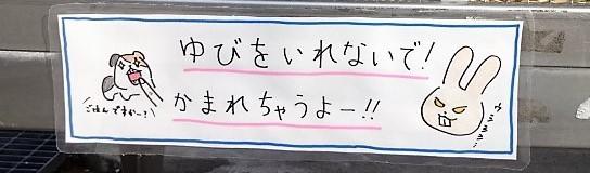 f:id:muukufu:20170509161151j:plain