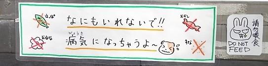 f:id:muukufu:20170509161231j:plain