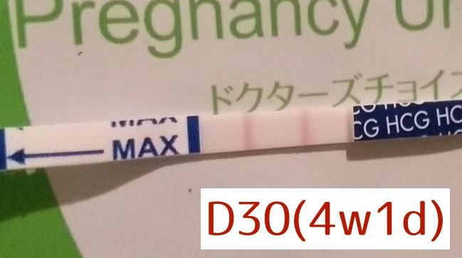 生理当日の妊娠検査薬(陽性)