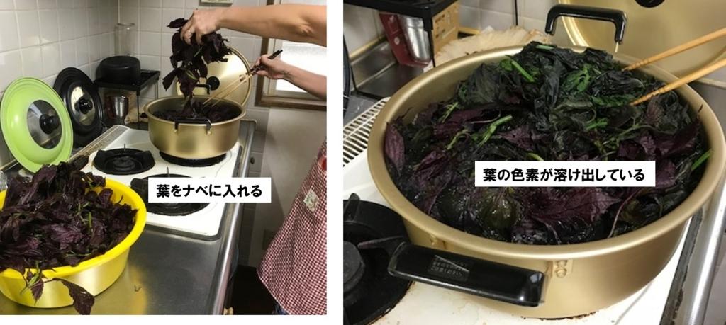 洗い上がった赤シソの葉を沸騰した大鍋で10分ほど煮出す