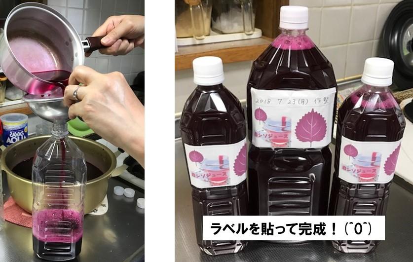 赤紫蘇ジュースを消毒したペットボトルに入れたら完成