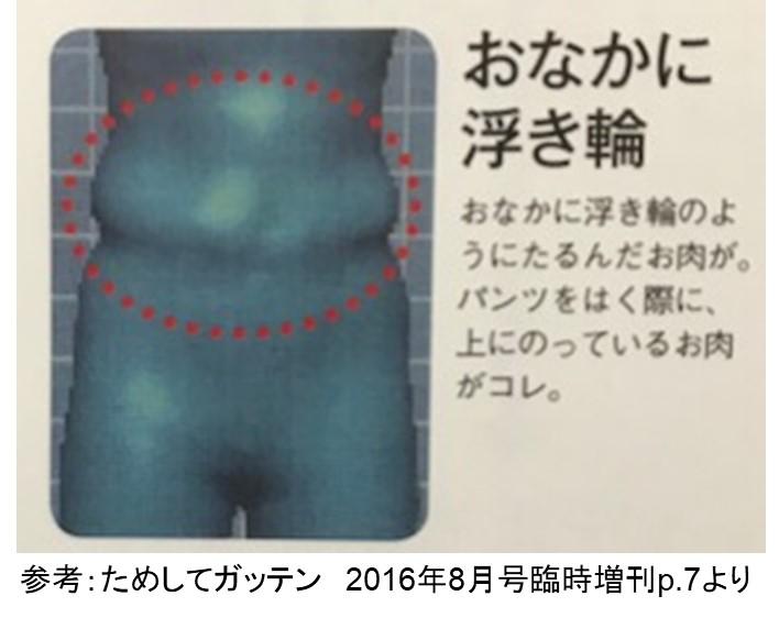f:id:my-manekineko:20180727120919j:plain