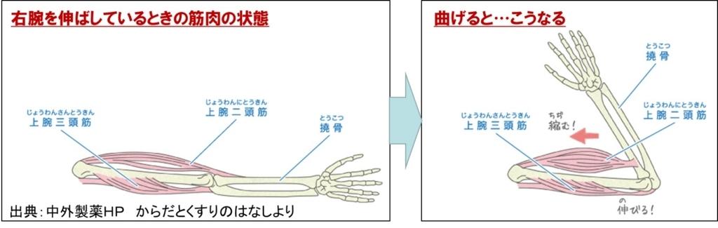 f:id:my-manekineko:20180808063336j:plain