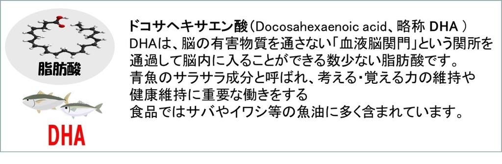 f:id:my-manekineko:20190109161127j:plain