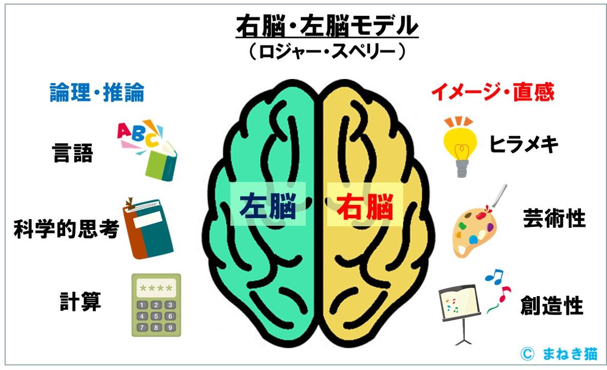 右脳・左脳モデル ロジャー・スペリーのモデル