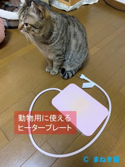 猫用に使用できるヒータープレート