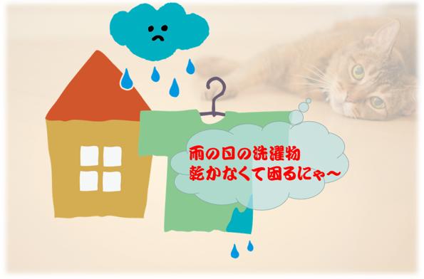 雨の日は洗濯物が乾かなくて困るにゃあ~濯乾燥機能付き洗濯機のお勧め