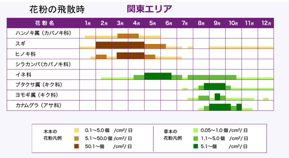 花粉の飛散時期カレンダー