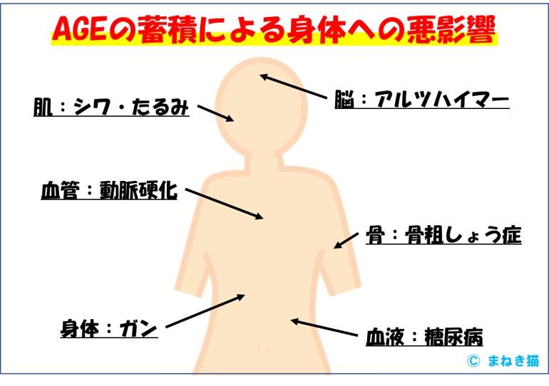 AGEの蓄積による身体への悪影響