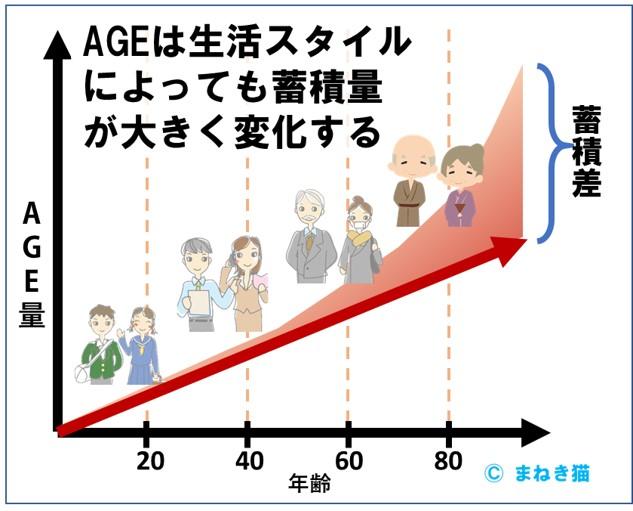 AGEは生活スタイルによっても蓄積量が大きく変化する