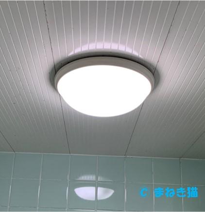 お風呂場は防水型の蛍光灯
