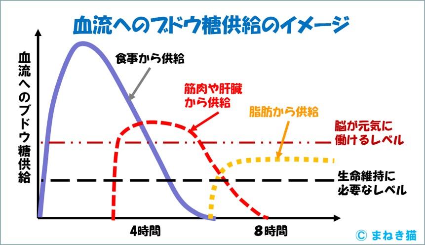 1-3-血流へのブドウ糖供給のイメージ