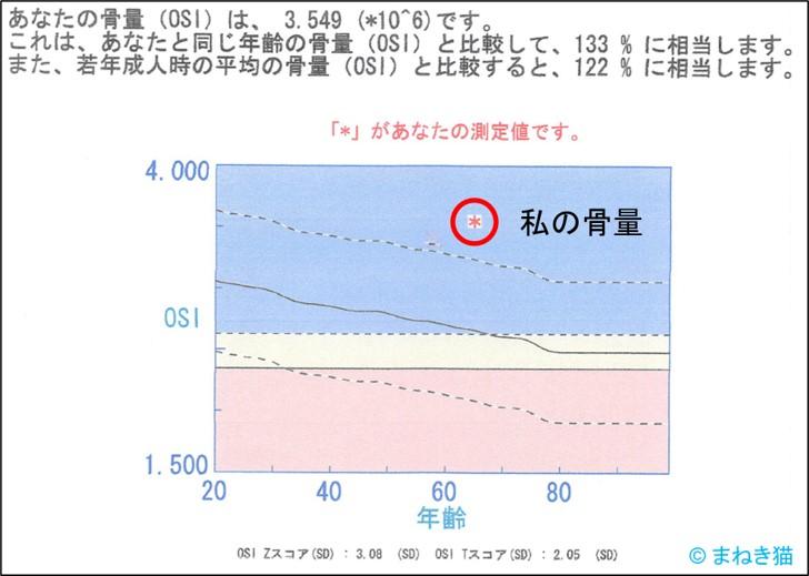 2-6-骨密度の測定値