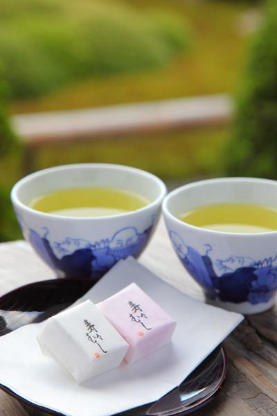 f:id:my-milk-tea:20210630230154p:plain